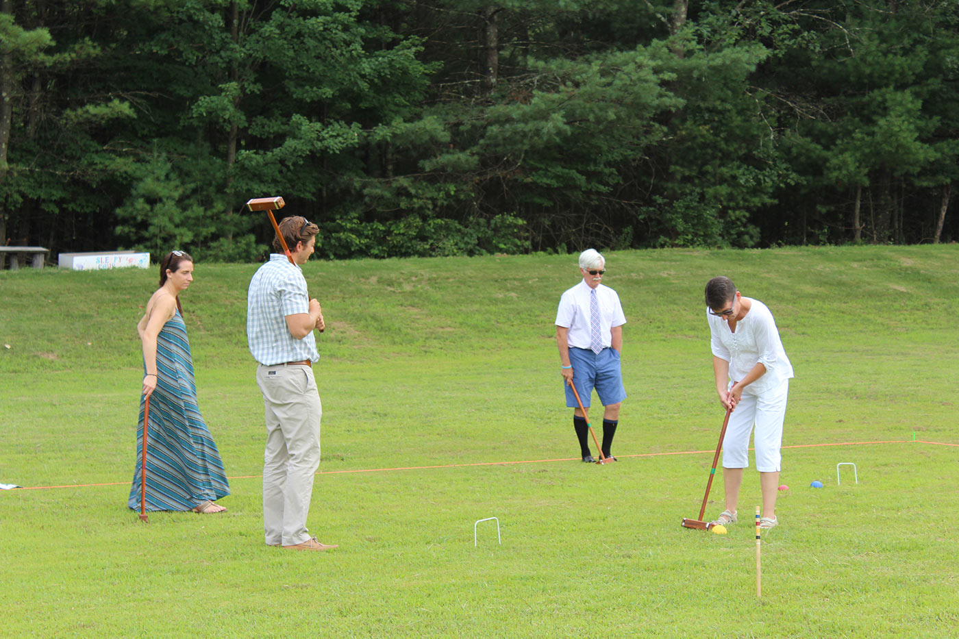 Group of people playing croquet on grass