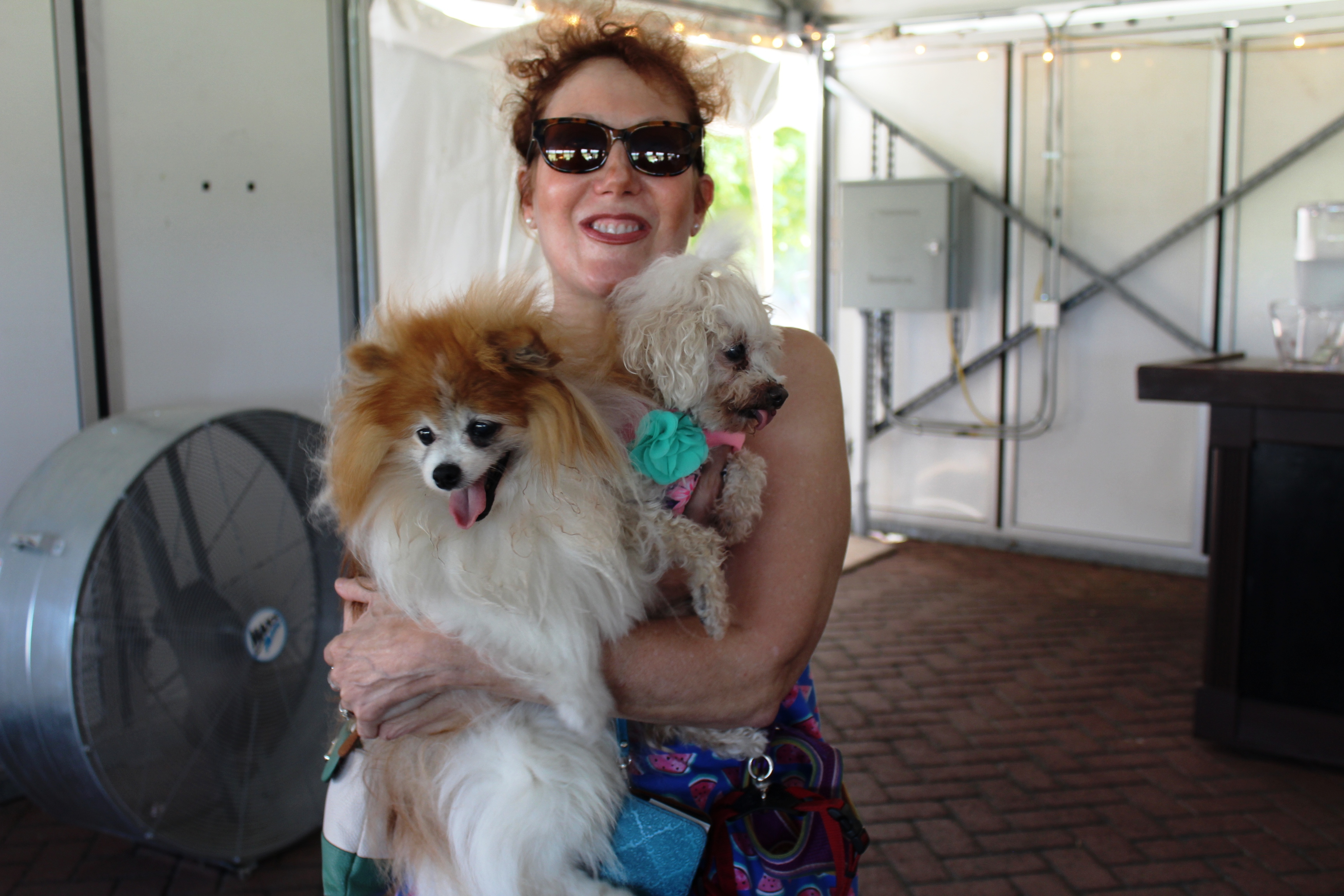Woman smiling holding two small dogs at the Saratoga Dog & Pony Show to benefit AIM Services, Inc.