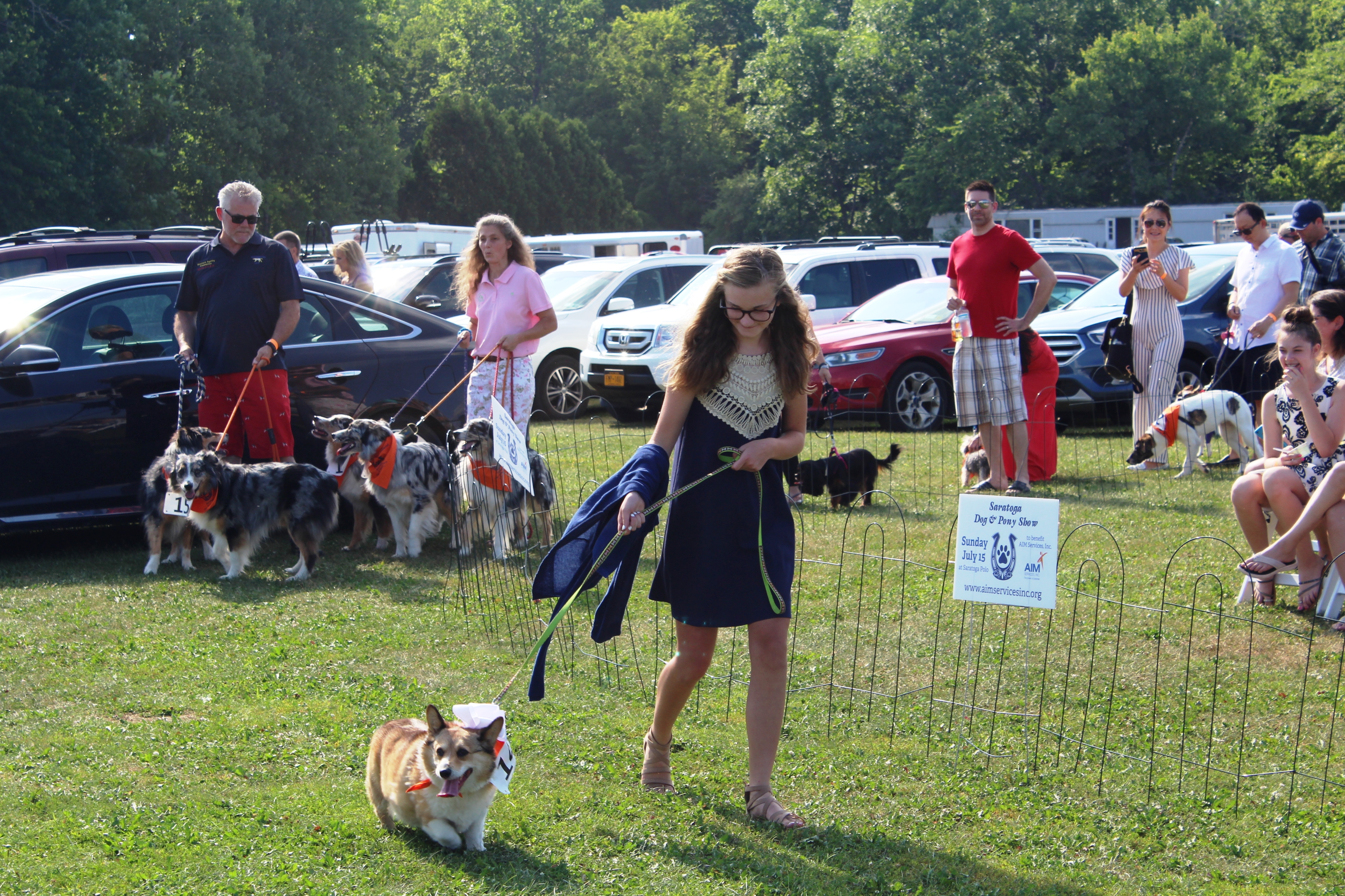Teen girl walking corgi dog at the Saratoga Dog & Pony Show to benefit AIM Services, Inc.
