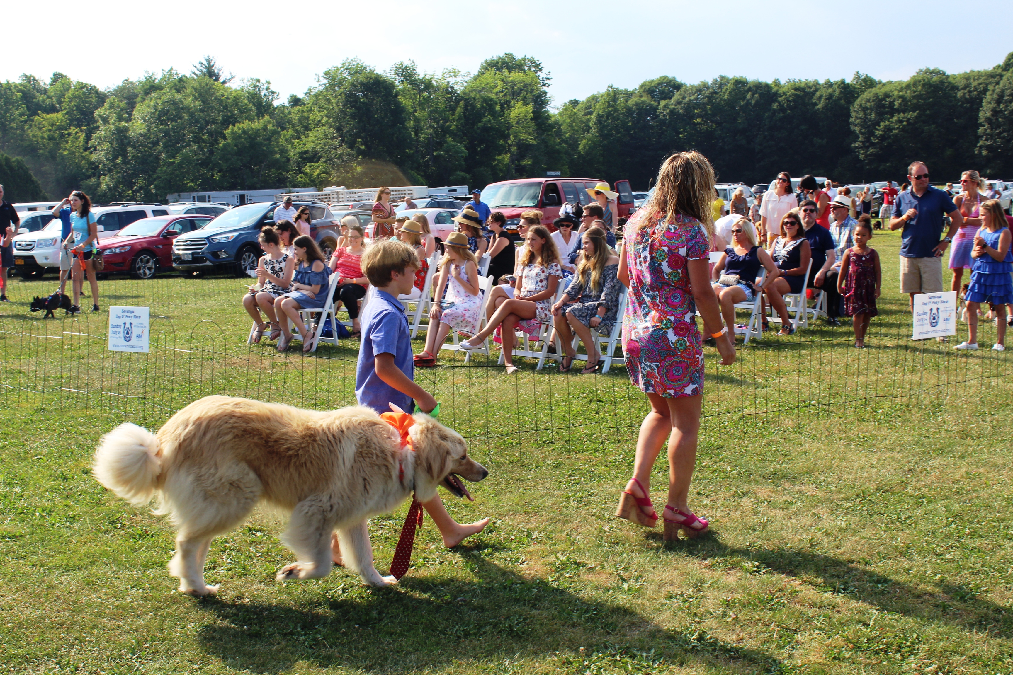 Young boy walking dog wearing a tie at the Saratoga Dog & Pony Show to benefit AIM Services, Inc.