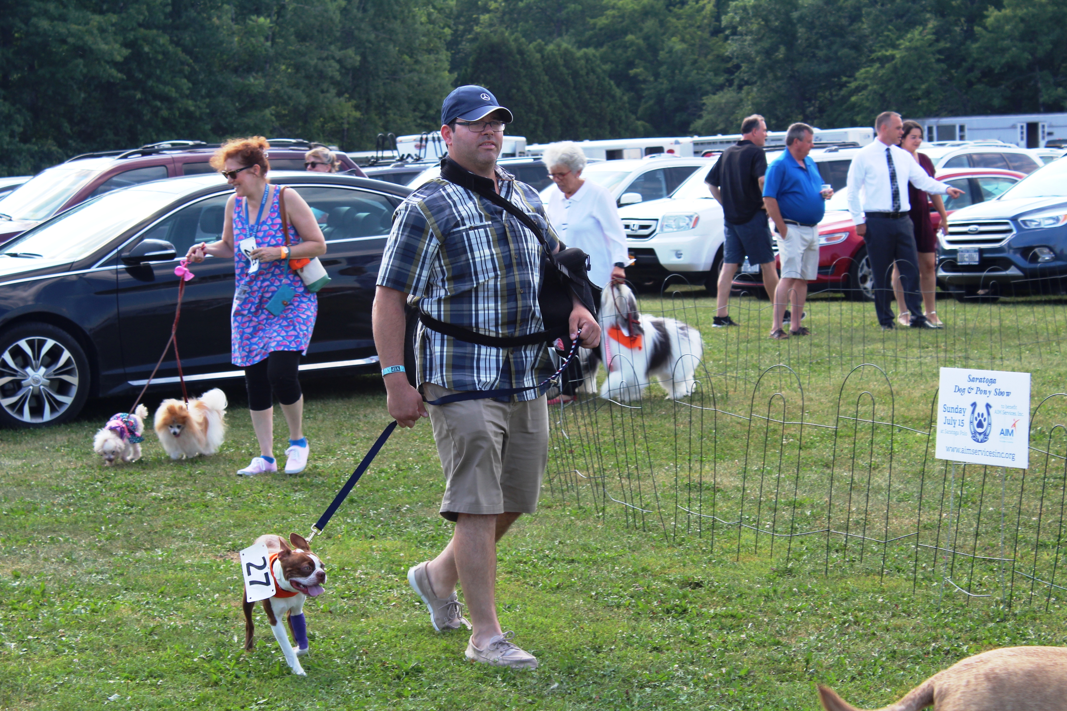 Man walking dog through dog show at the Saratoga Dogs Pony Show to benefit AIM Services, Inc.