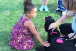 Girl petting dog at the Saratoga Dog & Pony Show to benefit AIM Services, Inc.