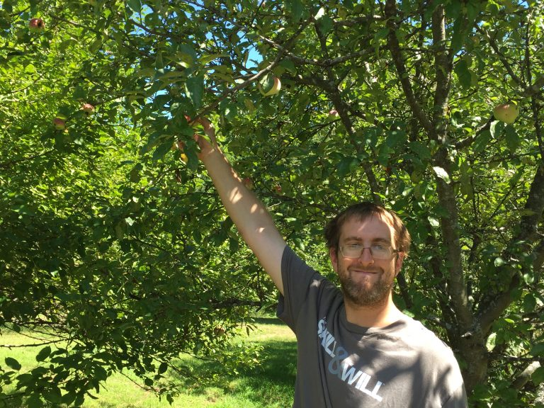 A man picking up apples from his garden apple tree - AIM Services, Inc.