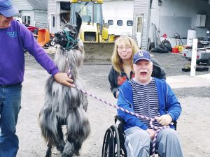 Man in wheelchair with llama